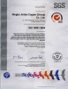 ISO 14001:2004 by SGS