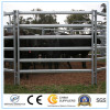 5footx10foot American Galvanized Steel Used Corral Panels/Steel Cattle Panel