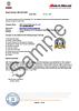 Audit Profile