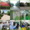 GMP Factory