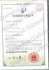 Domestic Patent Certificate