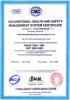 OHSAS 18001: 1999