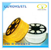 LED Flexible Strip Light is ETL Certified
