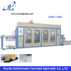Ruian Donghang Vacuum Forming Machine for Candy Box