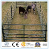 China Supplier Livestock Cattle Panel/Steel Cattle Panel to USA