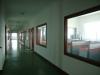 Factory Pics 3