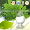 Natural Kosher Certified tea polyphenol