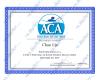 ACA Grade II Certificate