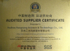 SGS Supplier Assessment Report 2008