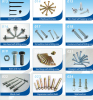 All kinds of screws fasteners