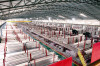 Warehouse of Stainless Steel Pipe /Tube