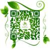 Company QR code