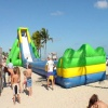 Inflatable Slide, Water Slide, Hippo Giant Slide (B4039)