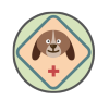 Shinova Solutions for Veterinary Hospitals