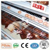Hot Sale Egg Layer Chicken Cage System