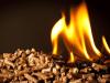 How To Start Biomass Wood Pellet Business