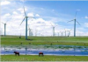The development of renewable resources in China