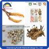 hot sale and factory supply chinese caterpillar fungus in stock