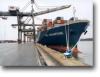Cargo ship from china to Bandar Abbas/ Dubai/Jeddah/Dammam/Riyadh/Kuwait/Sharjah/Muscat
