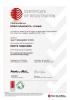ISO/TS16949:2009