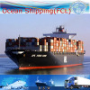 International Logistic Service for Shipment From China to U. S. a/Canada/Mexico