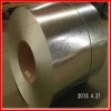 Galvanized Steel Coil Customer from Paraguay