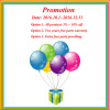 Promotion in 4th quarter of 2016