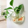 Wall Aquarium HK-3664