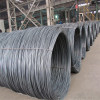 Main Product--Steel Wire