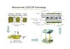 Monochrome LCD/LCM Technology ( 1 )