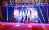 LED star curtain for event show
