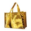 Metallic laminated Non-woven bag (HBNB-375)