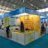 shanghai fair in goods