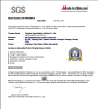 SGS AUDIT REPORT