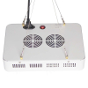 1000W high power grow light for vegetable cultivation