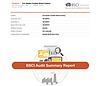 BCSI Audit