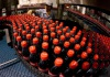 Carbonated Beverage/Drink Production Line