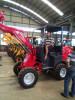 Germany customer check wheel loader