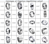 Tungsten rings(Silver color)