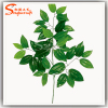 High Quality Evergreen Plastic Artificial Leaves for Decoration
