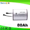 LANYU Brand NEW 80AH Li-ion battery