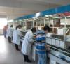 Tianyi workplace