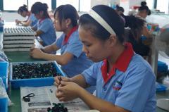Yueqing Dahe Electric Co., Ltd.