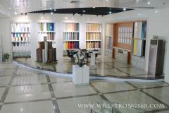 Guangzhou Willstrong New Material Holding Co., Ltd.