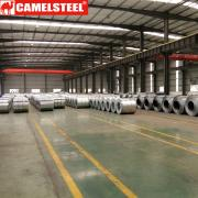 Shandong Comeon Trade Co., Ltd.