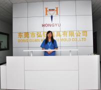 Hongyu Mould Limited