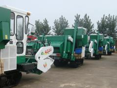 Qingdao Impetus International Trading Co., Ltd.