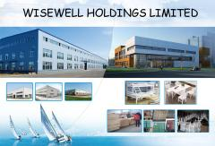 Wisewell Holdings Limited
