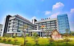 Sichuan Dongfang Insulating Material Co., Ltd.