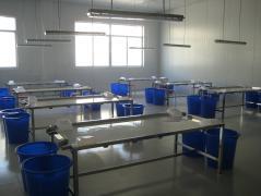 Feixian Yijie Foodstuff Co., Ltd.